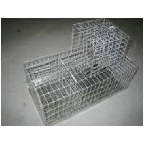 Finch Trap Cage http://www.elitepet.com.au/home/index.php?route=product/product&product_id=1096