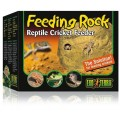 Terra Cricket Feeding Rock