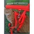 Nylon Cat Harness W/Lead Carded Small Cat,Kitten