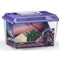 Hermit Crab Kit(Incl Hut,Food,Sponge & Accessories)