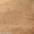 Bird Sand 10kg