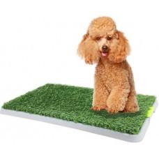 Green Dog Trainer Toilet