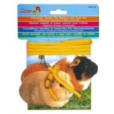Guinea Pig Harness & Lead