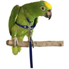 Bird Harnesses: Large - Suit Ringnecks