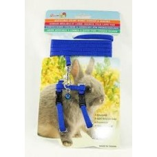 Dwarf Rabbit Harness & Lead