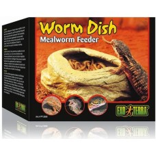 Meal Worm Dish