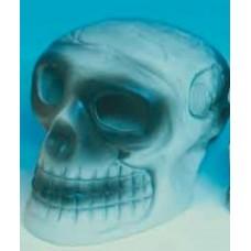 Resin Skull Med