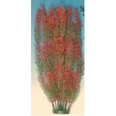 Plastic Plant - X/Lge 36cm - Foxtail Bush