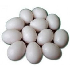 Plastic Poultry Eggs - Large