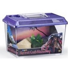 Hermit Crab Kit(Incl Hut,Food,Sponge & Accessories)